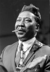Download Muddy Waters ringtones free.