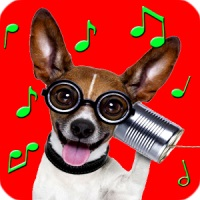 Best pets ringtones for phones and tablets.